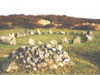 Beaghmore Stone Circles Cookstown County Tyrone